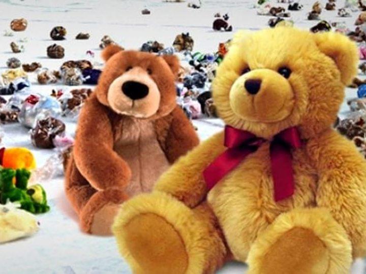 Teddy Bear Toss Il 22 Dicembre Nel Match Con Giulianova